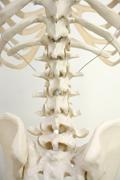 治療を受けられる方へ|腰痛治療 接骨院 大府市